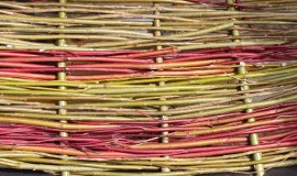 willow weaving (2)