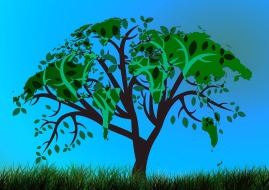 tree-909705_1280